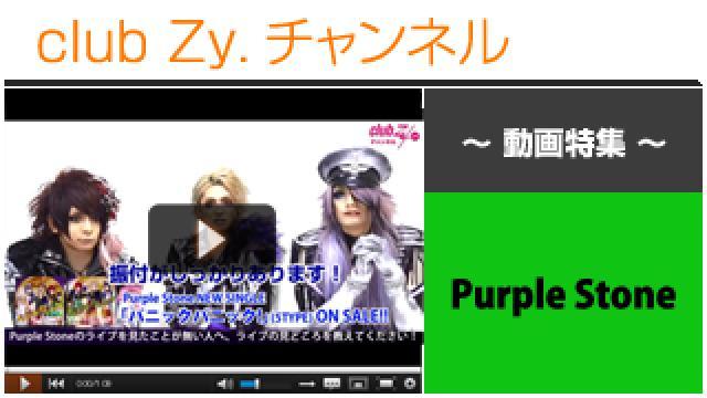 Purple Stone動画③(ライブの見所) #日刊ブロマガ!club Zy.チャンネル