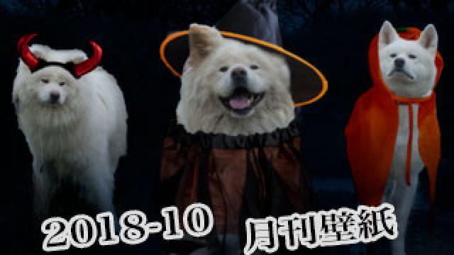 【わさお通信:特別増刊 2018-10】月刊わさお壁紙