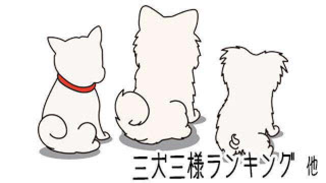 【わさお通信:特別増刊】 三犬三様ランキング 他