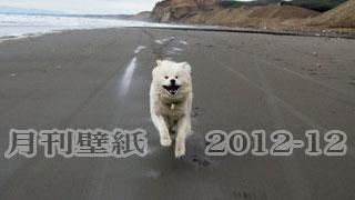 【わさお通信:特別増刊 2012-12】月刊わさお壁紙