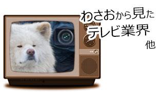 【わさお通信:特別増刊 2013-01】わさおから見たテレビ業界、他