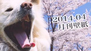 【わさお通信:特別増刊 2014-04】月刊わさお壁紙