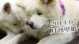 【わさお通信:特別増刊 2014-07】月刊わさお壁紙