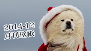 【わさお通信:特別増刊 2014-12】月刊わさお壁紙