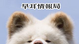 【わさお通信:特別増刊 2013-02to2013-03】早耳情報局