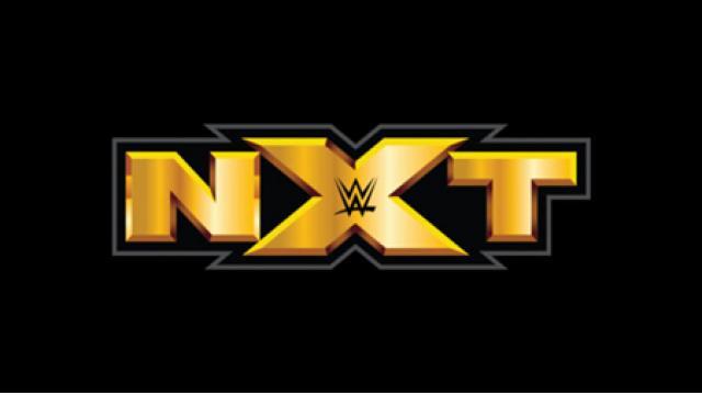 「私たちは、人間よりも神に従うべきです」WWE NXTのレフェリーは陰謀論者