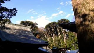 初詣レポート 氷川大社(埼玉県さいたま市)