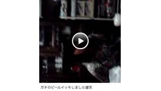 自称「ヤクザの娘」13歳の女子に未成年飲酒と盗撮が発覚!!炎上騒動も低年齢化の兆し!!