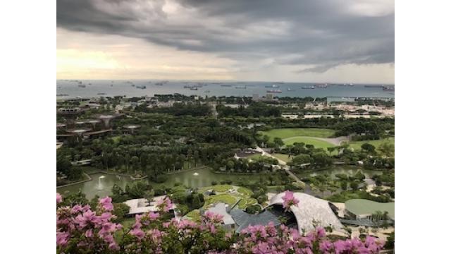 【むらい】シンガポールのカジノ超絶奮闘記【フル版】