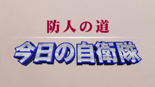 【国防・防人チャンネル】 更新情報 - 平成25年6月21日