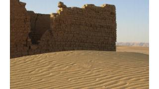 エジプトで干物のミイラ大量出土 3千年以上前か