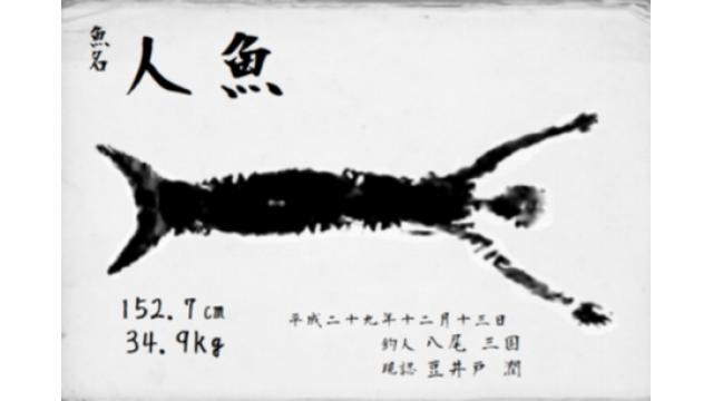 琵琶湖で1メートル超の人魚釣れる 人魚拓も展示