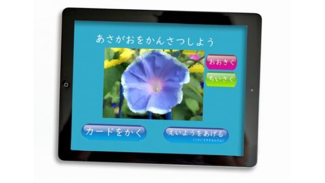 仮想アサガオ、アプリで栽培 デジタル化する生活科 マキャベリ小