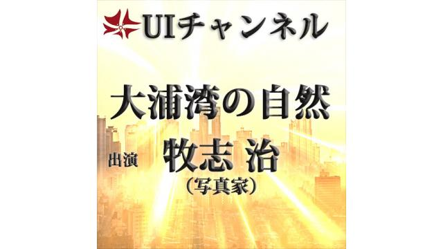 第201回UIチャンネル放送「大浦湾の大自然」 講師:牧志治氏(写真家)