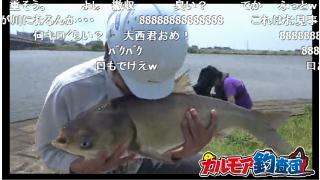 【カルモア釣査団】中国四大家魚チャレンジ 其ノ壱 ハクレン