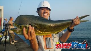 【カルモア釣査団】海の長距離ランナー シイラを狙う!
