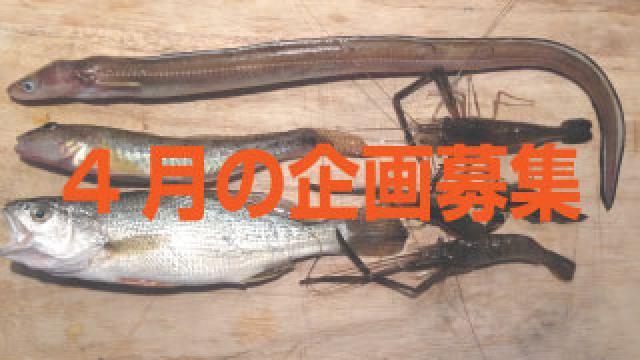 【後援会報】4月の釣り物企画の募集