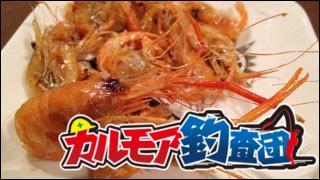 【レポート】カルモア釣査団 (本当に)誰でも簡単テナガエビ釣り