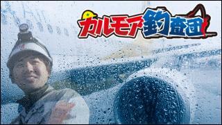 【後援会報】本日25日夜の公開テスト放送について