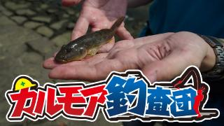 【レポート】カルモア釣査団 ハゼクラ 大西の逆襲