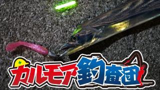 【レポート】カルモア釣査団 ドラゴンハンティング 東京湾の太刀魚を狙う!