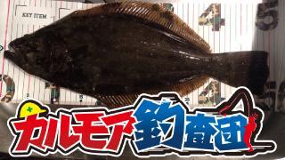 【レポート】カルモア釣査団 ヒラメ釣 泳がせ釣りに思いを馳せる