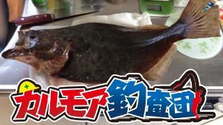 【レポート】カルモア釣査団 島で釣り実況 大西の帰省遠征特番