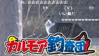 【レポート】カルモア釣査団 鱒釣り実況 幻のスーパーレインボーを釣れ
