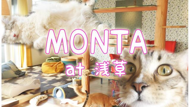 『MONTA』店舗情報