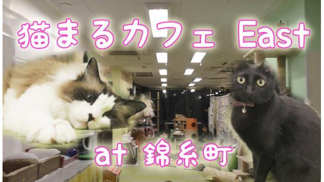 『猫まるカフェ East』店舗情報