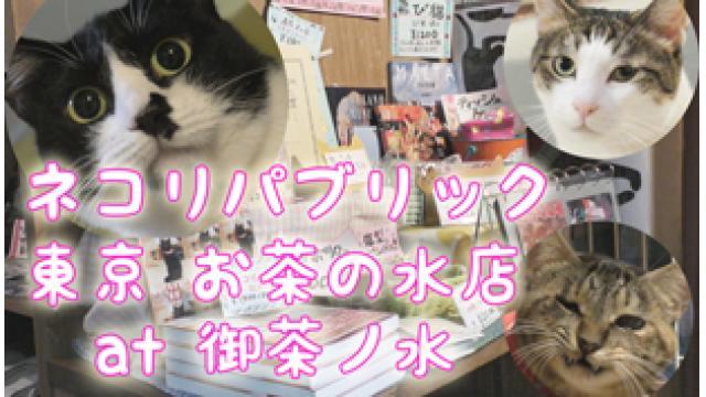 『ネコリパブリック 東京 お茶の水店』店舗情報