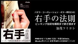 (無料ブログ)ピッキングの教則DVDを発表します!