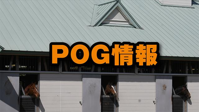 【POG情報】 袋とじに入れるべきか迷った10頭リスト