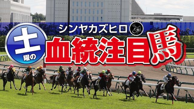 【2020/8/28】シンヤカズヒロ 土曜の血統注目馬