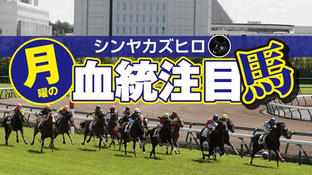 【2020/11/22】シンヤカズヒロ 月曜の血統注目馬