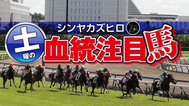 【2021/9/3】シンヤカズヒロ 土曜の血統注目馬