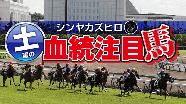 【2021/9/10】シンヤカズヒロ 土曜の血統注目馬