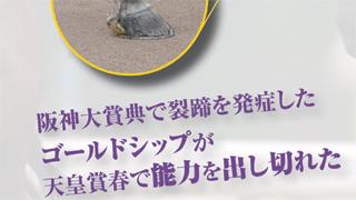 【2015/6/18】 その後のカリスマ装蹄師は?/裂蹄を発症したゴールドシップが天皇賞・春で能力を出し切れた理由、週末に行われる全コースの傾向分析