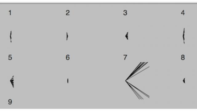 カプセルネットの可視化に挑戦(とりあえず中間状態を見てみる)【カプセルネット】