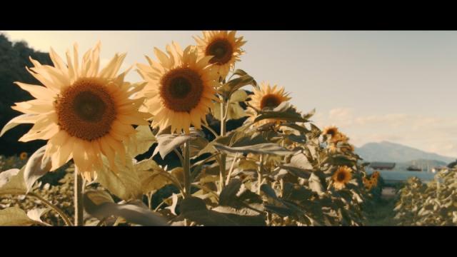 神保町映画祭リターンズ/「徒花の季節」佐野大監督インタビュー