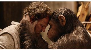【映像|洋画】ヒトの世紀が終わろうとしている―――。『猿の惑星:新世紀(ライジング)』