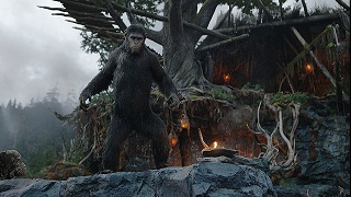 【映像│洋画】『猿の惑星:新世紀(ライジング)』猿と人類の存亡をかけた決断-共存か、それとも決戦か。