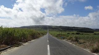 サトウキビ畑に囲まれた喜界島の一直線道路