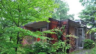 非日常、緑に抱かれて癒やされる隠れ家ギャラリー「DAR VIDA」