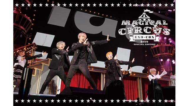 """8/30 (金) 20:00~  『EXO-CBX """"MAGICAL CIRCUS"""" 2019 -Special Edition-』"""