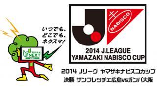11/8(土)18:00~ 2014 Jリーグ ヤマザキナビスコカップ 決勝 サンフレッチェ広島vsガンバ大阪