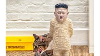 ネコが縛られた金正恩で爪を研ぐ! スタイリッシュ不謹慎なキャットスクラッチポストが登場
