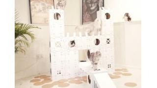 ネコが高級クッションよりも大好きな「ダンボール箱」をヒントに作ったキャットハウス・キット