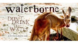 強靭な肉体を持つカンガルーがゾンビ化して人間を襲うショートフィルム「Waterborne」
