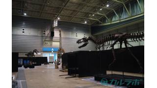 「ダイノワールド2015 ヨコハマ恐竜博」設営に独占潜入!世界初公開の「トルボサウルス」をチラ見せ